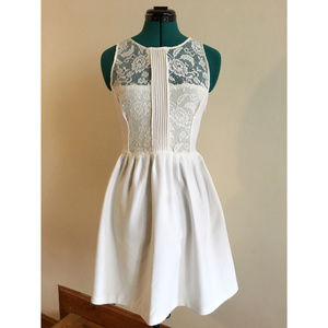Zara Fit and Flare Lace Dress Size S